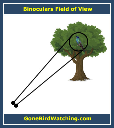 Binoculars Field of View Explained